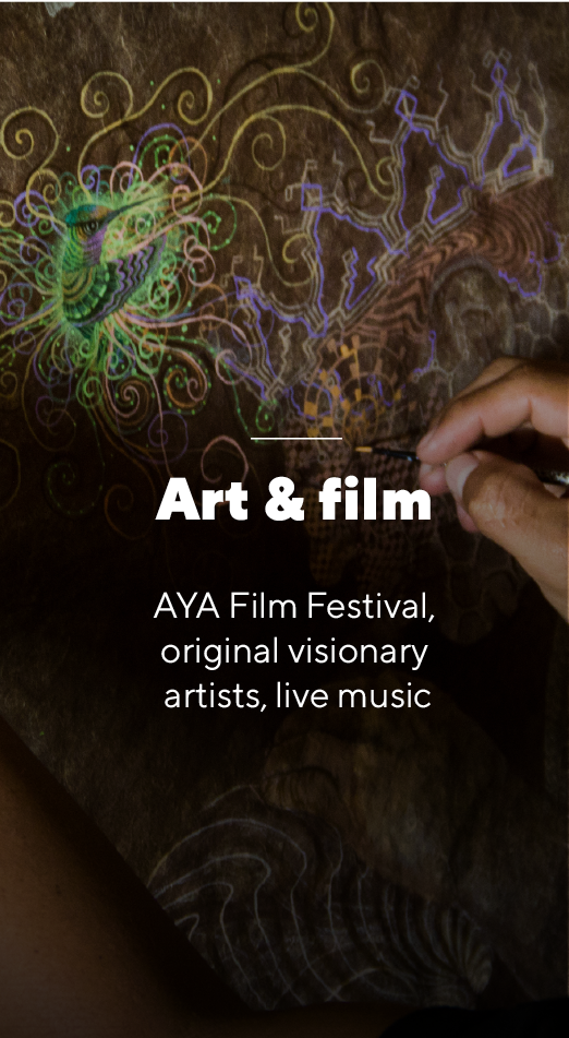Art and film - World Ayahuasca Conference 2019