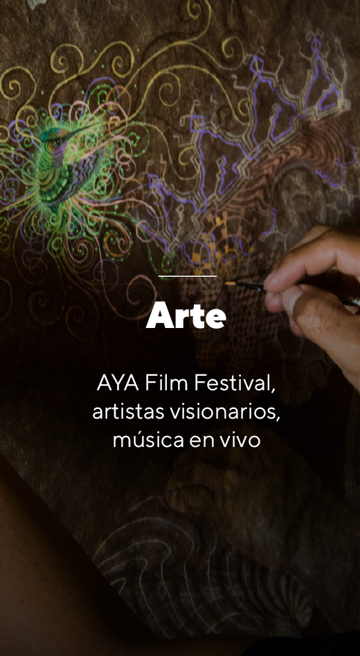 Arte - World Ayahuasca Conference 2019